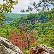 Cloudland Canyon State Park Georgia Art Print