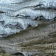 Cluthu Tree Art Print