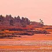 Coastal Bay At Low Tide Art Print