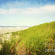 Coastal Dunes Art Print