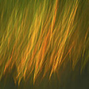Coastal Grass Art Print