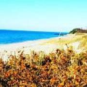 Coastal Lookout Art Print