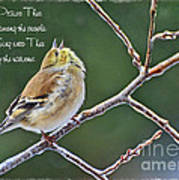 Cock-a-doodle Doo Gold Finch-with Verse Art Print