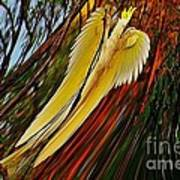 Cockatoo In Abstract Art Print