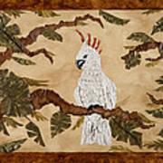 Cockatoo Out On A Limb Art Print by Nickie Bradley