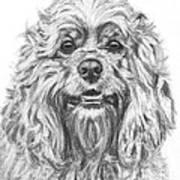 Cocker Spaniel Detail Art Print