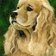 Cocker Spaniel Dog Art Print by Alice Leggett