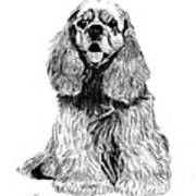 Cocker Spaniel Puppy Art Print