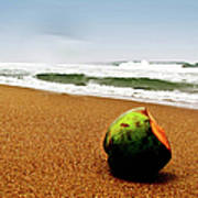 Coconut On Sandy Beach With Waves And Art Print