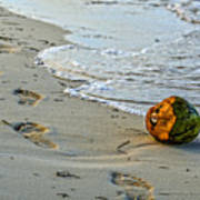 Coconut On The Sand Art Print
