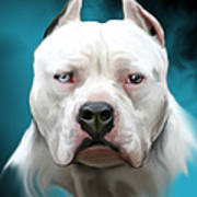 Cold As Ice- Pit Bull By Spano Art Print by Michael Spano