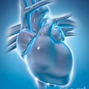 Cold Heart Art Print
