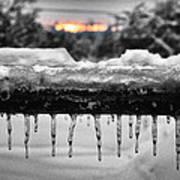Cold Morning Light Art Print