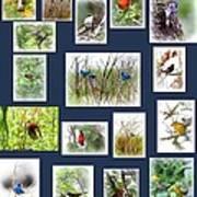 Collage Of Indigos 6 Art Print