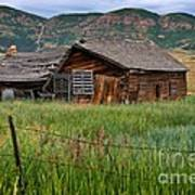 Collapsed Log House In Utah Art Print