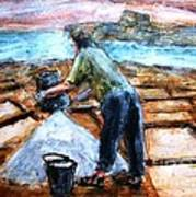 Collecting Salt At Xwejni Gozo Art Print