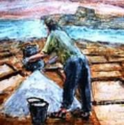 Collecting Salt At Xwejni Gozo Art Print by Marco Macelli