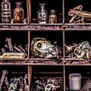 Collection At Techatticup Gold Mine-alt Process Art Print