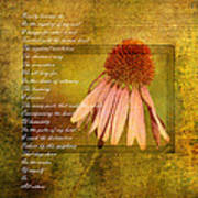 Collective Poem With Echinacea Flower Art Print