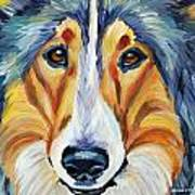 Collie Art Print by Melissa Smith