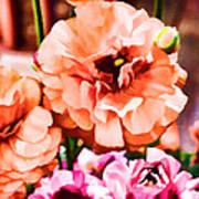 Color 145 Art Print