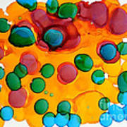 Color Bubbles Art Print