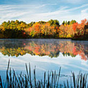 Color On Grist Millpond Art Print by Michael Blanchette