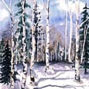 Colorado Aspens 2  Art Print