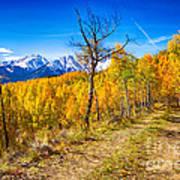Colorado Backcountry Autumn View Art Print