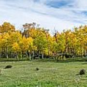 Colorado Fall Panorama Print by Baywest Imaging