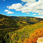 Colorado In Autumn Art Print