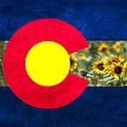 Colorado State Flag In Van Gogh Art Print