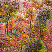 Colored Pallet Smoke Trees Art Print
