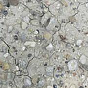 Ground Rocks Art Print