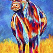 Colorful Angus Cow Art Print
