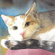 Colorful Cat Watercolor Portrait Art Print