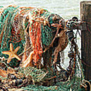 Colorful Catch - Starfish In Fishing Nets Art Print