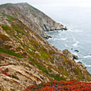 Colorful Cliffs At Point Reyes Art Print
