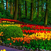 Colorful Corner Of The Keukenhof Garden 4. Tulips Display. Netherlands Art Print