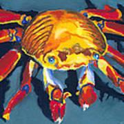 Colorful Crab Art Print