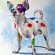 Colorful Dalmatian Chihuahua Art Print