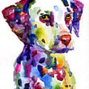 Colorful Dalmatian Puppy Dog Portrait Art Art Print