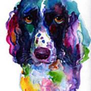 Colorful English Springer Setter Spaniel Dog Portrait Art Art Print
