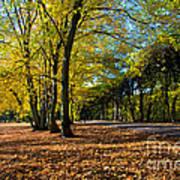 Colorful Fall Autumn Park Art Print