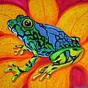 Colorful Frog Art Print