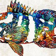 Colorful Grouper 2 Art Fish By Sharon Cummings Art Print