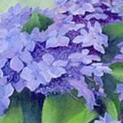 Colorful Hydrangeas Original Purple Floral Art Painting Garden Flower Floral Artist K. Joann Russell Art Print