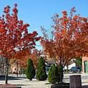 Colorful Ohio Trees Art Print