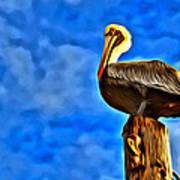 Colorful Pelican Art Print