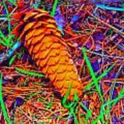 Colorful Pinecone Art Print